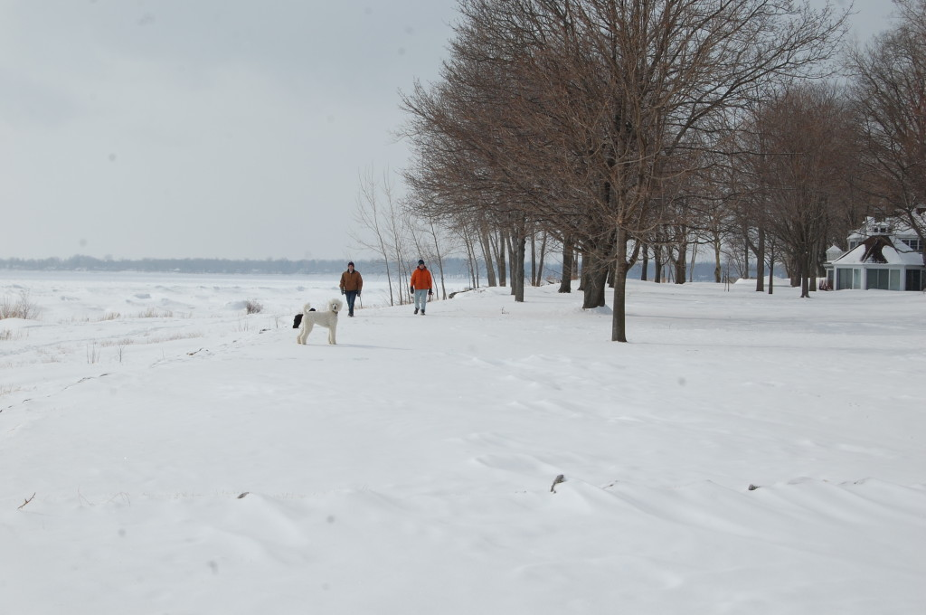 Father and son walks with the dogs along frozen Lake Erie.